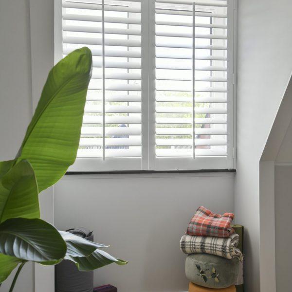 Shutter advies | Blend® Window Fashion